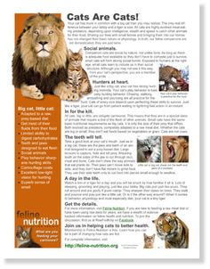 One Page Guides in Feline Nutrition