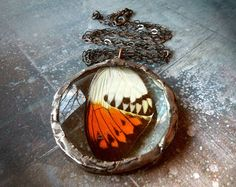 Real Butterfly Large Glass Lens Pendant with Oxidized Sterling Silver Chain $145.00 #butterfly #pendant #jewelry