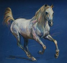 Arabian Horse Portrait 3  Equestrian Art by PETARTPortraits, $120.00