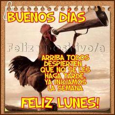 Buenos Días: Arriba todos, despierten, que no se les haga tarde