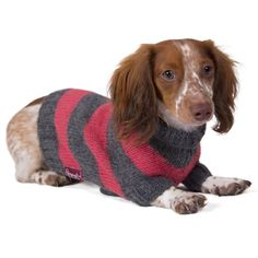 Striped Dog Sweater: Salmon and Gray Hand-knit Sweater made from 100% Soft Alpaca >>> Continue to the product at the image link.