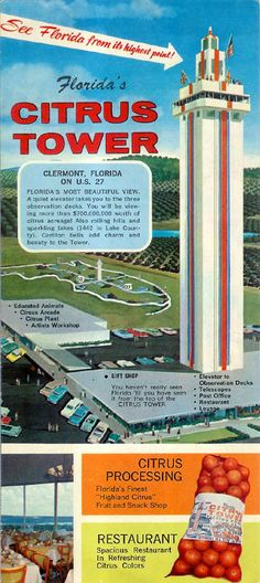 Old Advertisement for the Florida Citrus Tower