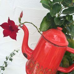 Detail bij kamer Rojo! #rood