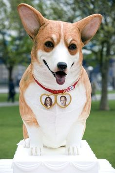 """Too Cute to Eat. Freeview HD attempts the Guinness World Record for largest canine cake on the banks of the Thames as part of the Royal Wedding celebrations for Prince William and Catherine Middleton. The giant corgi wedding cake was enjoyed by the three corgis that were used in """"The King's Speech"""" and """"The Queen""""."""