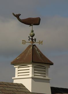 Weather Vane:  Like this weather vane.  More practical with our wind. Needs windows for light.