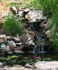 Waterfall with Koi Pond