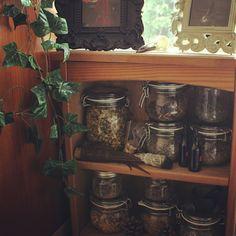 "thegreencauldron: "" A small portion of my herbs """