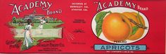 Academy Apricots vintage can label, 1920s