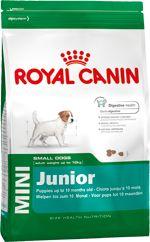 Szczenięta 2-10 Miesiąca życia - Psy Małe - Royal Canin