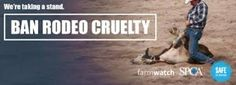 Free Online Image Editor Online Image Editor, Pet Day, Online Images, Animal, Free, Animaux, Animals, Animais