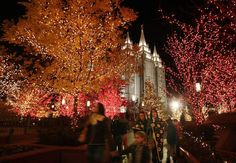 Questions and Answers Behind the Lights on Temple Square