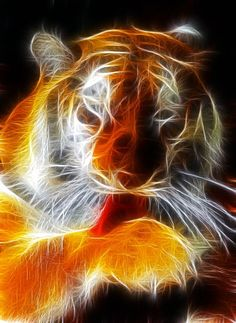 Tiger at ease | Fractal Cats and Big Cats .and other things. | Pinter…