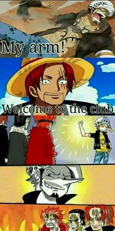New memes anime one piece ideas One Piece Comic, One Piece Manga, One Piece Figure, One Piece Drawing, One Piece Fanart, One Piece Pictures, One Piece Images, All Meme, New Memes