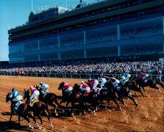 Lone Star Park Horse Racing http://www.lonestarpark.com/home.aspx