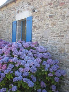 maison bretonne/ trégor (22)