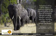 We too are humbled, grateful and blessed to have clients who were so deeply moved by our Tasimba Linkwasha safari.