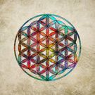The Flower of Life Symbol Variations Collection on Society6.