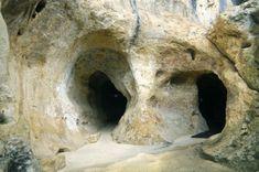 Digital Tour of La Grotte De Font De Gaume La grotte ornée de Font-de-Gaume se trouve sur la commune des Eyzies-de-Tayac en Dordogne. Ses parois comptent plus de 200 gravures et peintures magdaléniennes