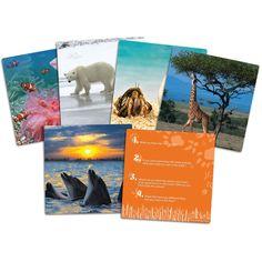 Learning Resources Lumea animalelor salbatice