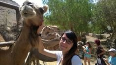 Tante coccole per il mio amichetto... Oasis Park, Fuerteventura.