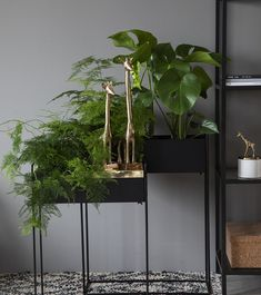 Kvadraturen plantekasser kommer i to størrelser, her er de i sort. Interior And Exterior, Interior Design, Air B And B, Houseplants, Garden Design, Planters, Shabby, Farmhouse, Living Room