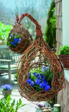 Make hanging baskets yourself: 3 simple ideas- Blumenampeln selber machen: 3 einfache Ideen Load the traffic lights with violets (viola cornuta), thyme and sage and pour some soil into the spaces, then water. Hang the traffic lights on a rope. Deco Floral, Arte Floral, Willow Weaving, Basket Weaving, Container Plants, Container Gardening, Jardin Decor, Deco Nature, Willow Branches
