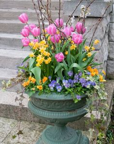 Container Gardening Ideas Spring Flower Container Garden - Enhance your home and curb appeal with bright and cheery spring bulb gardens. They make you want to shake the snow off and enjoy warmer days! Garden Bulbs, Garden Pots, Herb Garden, Garden Ideas, Container Flowers, Container Plants, Bright Flowers, Spring Flowers, Pot Jardin