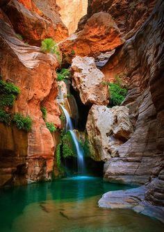 *ARIZONA~ELVES CHASM:This amazing natural wonder is considered one of the Grand Canyon's best-kept secrets.This rock formation is the oldest in the Canyon,dating to over 1.8 billion years ago.There's a plethora of diverse plant+wildlife.Elves Chasm is seriously one of the Colorado River's most beautiful spots.Accessing the chasm is an adventure in+of itself.It's located on the South Rim of the Grand Canyon.