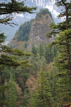 beacon rock - columbia river gorge