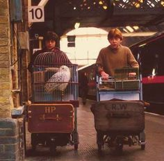 Harry Potter and Ron Weasley on platform 9 Hogwarts Express. Daniel Radcliffe and Rupert Grint. Harry Potter World, Mundo Harry Potter, Harry Potter Pictures, Harry Potter Cast, Harry Potter Love, Harry Potter Universal, Harry Potter Fandom, Harry Potter Kings Cross, Harry Potter Halloween
