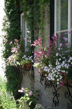 scrolled window boxes against stone makes the flowers pop
