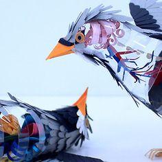 Paper Bird Anatomy    By Colombian artist Diana Beltran Herrera