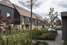 Built on the former Clay Farm site, Abode at Great Kneighton is a key part of a major new housing and mixed-use development in South Cambridge. Residential Architecture, Landscape Architecture, Arch House, Ireland Homes, Social Housing, Storey Homes, Types Of Houses, Garden Spaces, Urban Landscape