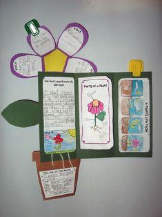 Plant unit foldable
