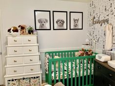 Puppy Dog Tales This twin nursery is dog themed to the max. How cute is that trio of dog portraits? Mint nursery art, puppy wI love this idea to makeNursery Theme Ideas for M Puppy Nursery Theme, Dog Nursery, Ikea Nursery, Safari Theme Nursery, Mint Nursery, Nursery Twins, Elephant Nursery, Nursery Neutral, Nursery Themes