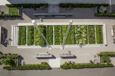 Image 1 of 52 from gallery of Novartis Physic Garden / Thorbjörn Andersson + Sweco architects. Photograph by Jan Raeber