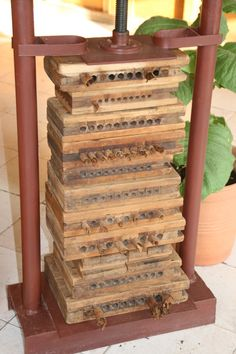 Cigar press in Cuba / Havana.