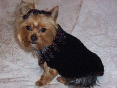 Free Crochet Dog Sweater Patterns - Dog Lovers Gifts too keep milo warm