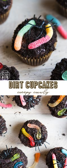 These dirt cupcakes are delicious chocolate cupcakes topped with chocolate frosting, oreo crumbs and gummy worms. Perfect for Halloween or a garden party! Halloween Cupcakes, Halloween Treats, Halloween Party, Halloween Baking, Halloween Foods, Halloween Desserts, Halloween 2019, Cupcake Recipes, Baking Recipes