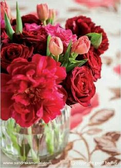 Flowers are always regarded as simple and amazing gift that one can send to his or her nearest one to express love and affection. With advent of internet based technologies, online flower deliver have gained significant exposure these days. Online flower delivery in noida from floral country has made things simple for many people. Visit- http://www.floralcountry.com/Send-flowers-to-noida