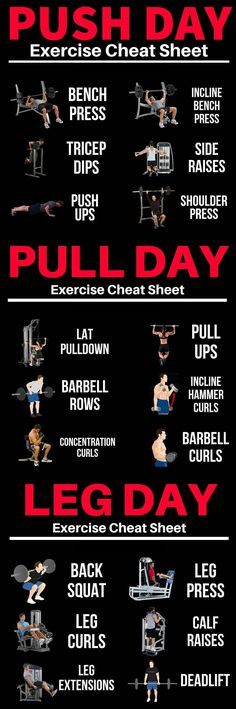 Push/Pull/Legs Weight Training Workout Schedule For 7 Days &; GymGuider Push/Pull/Legs Weight Training Workout Schedule For 7 Days &; GymGuider St Workout / Gym What are the benefits of […] training schedule Yoga Fitness, Sport Fitness, Fitness Workouts, At Home Workouts, Fitness Hacks, Fitness Motivation, Fitness Legs, Exercise Motivation, Muscle Fitness