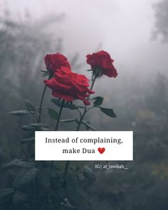 Daily Duaa Athkar and Estigfar Shyari Quotes, Allah Quotes, Muslim Quotes, Girly Quotes, Quran Quotes, Religious Quotes, Beautiful Islamic Quotes, Arabic Love Quotes, Islamic Inspirational Quotes