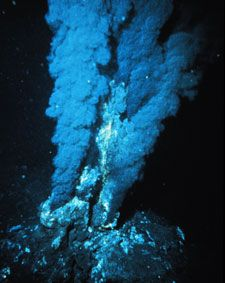 ... under the sea: Life around hydrothermal vents depends on chemical-producing bacteria