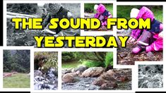 THE SOUND FROM YESTERDAY