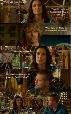 When do kensi and deeks start hookup