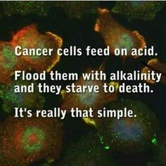 cancer cells feed on acid - ensure you eat an alkaline diet #cancer