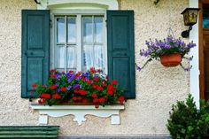 Nothing dresses up a window or balcony like flower boxes. Check out these 40 stunning flower and balcony flower box arrangements. Balcony Flower Box, Window Box Flowers, Window Boxes, Flower Boxes, Wooden Shutters, Farmhouse Shutters, Little Gardens, Garden Windows, Home Improvement Projects
