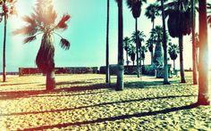 summer#usa#omnnomnom