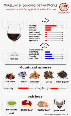 Impariamo a degustare il vino Montepulciano su Quattrocalici. Wine Party Appetizers, Riesling Wine, Wine Tasting Party, Tasting Menu, Wine Education, Spanish Wine, Wine Guide, Wine Deals, Wine Delivery