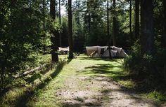 Kom kamperen bij de boswachter
